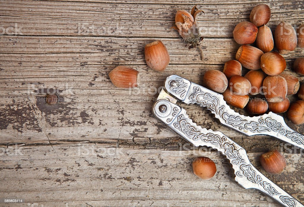 Hazelnuts (filbert) and nutcracker stock photo