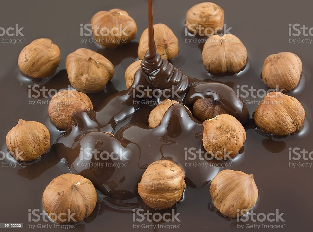 Hazelnuts being drizzled with chocolate royalty-free stock photo