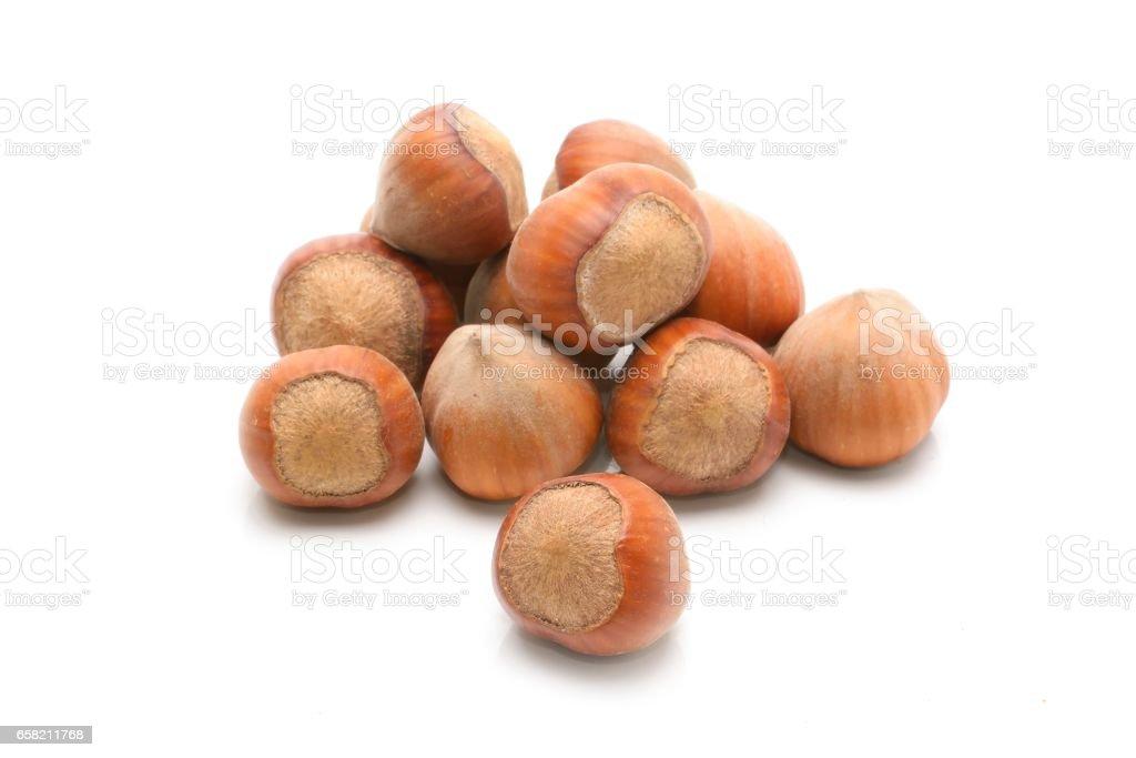 Hazelnuts. isolated on a white background stock photo