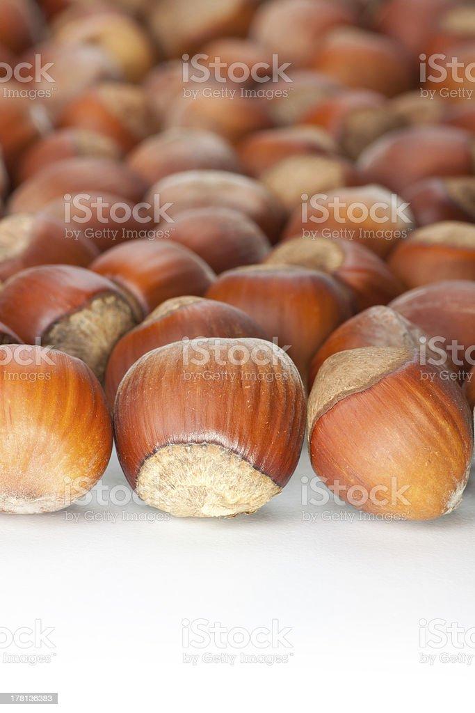 hazelnuts on white surface royalty-free stock photo