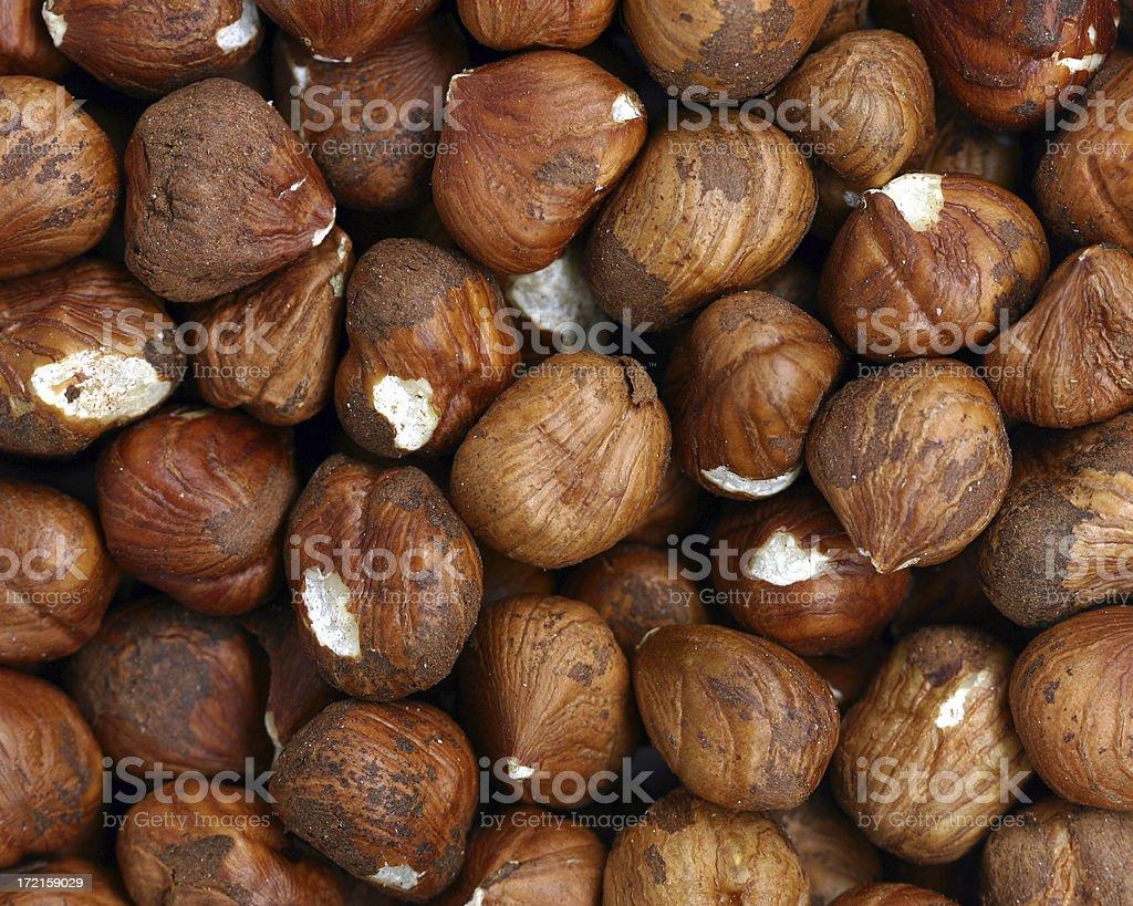 hazelnuts (filberts) stock photo