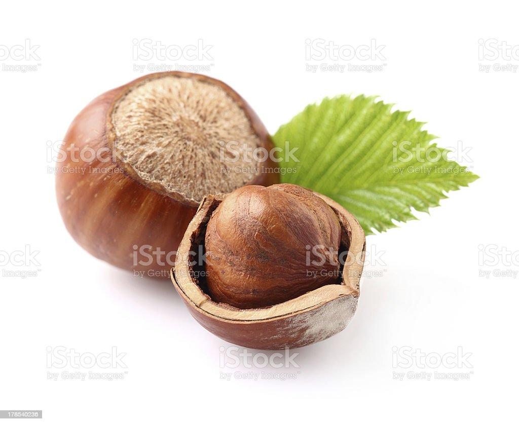 Hazelnuts with leaf stock photo