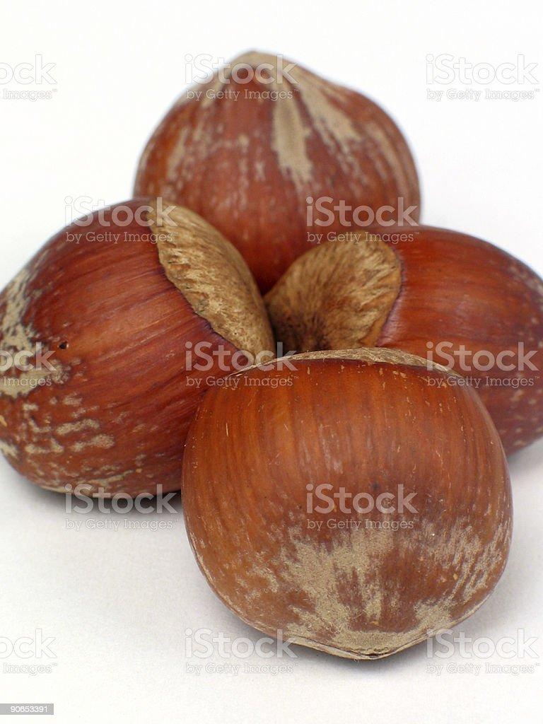 Hazelnuts1 royalty-free stock photo