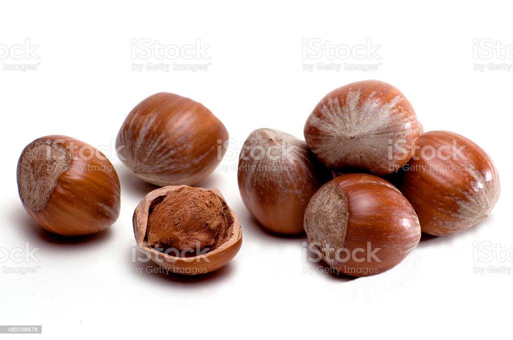 hazelnuts_isolated02 stock photo