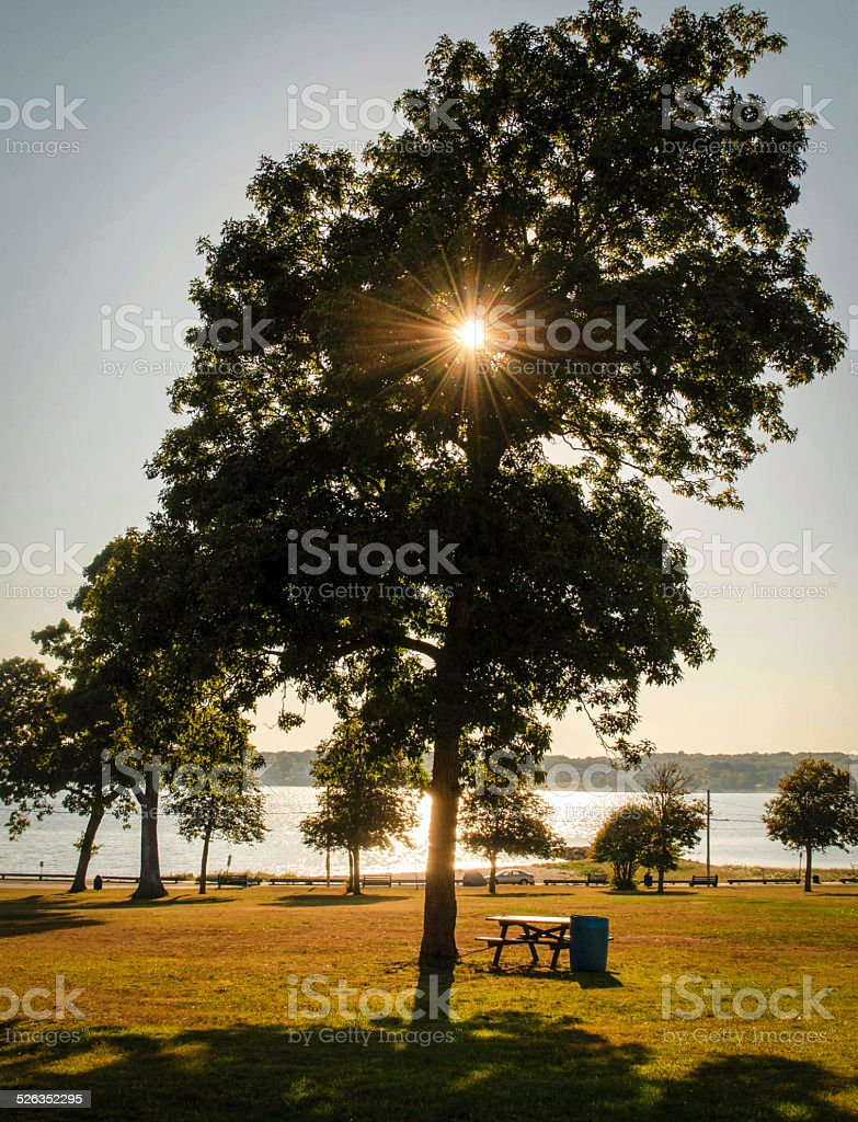Hazelwood Park stock photo