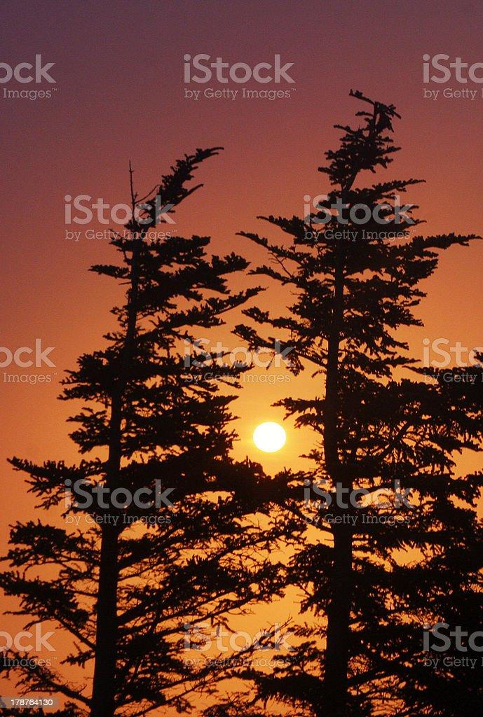Hazy Sunset royalty-free stock photo