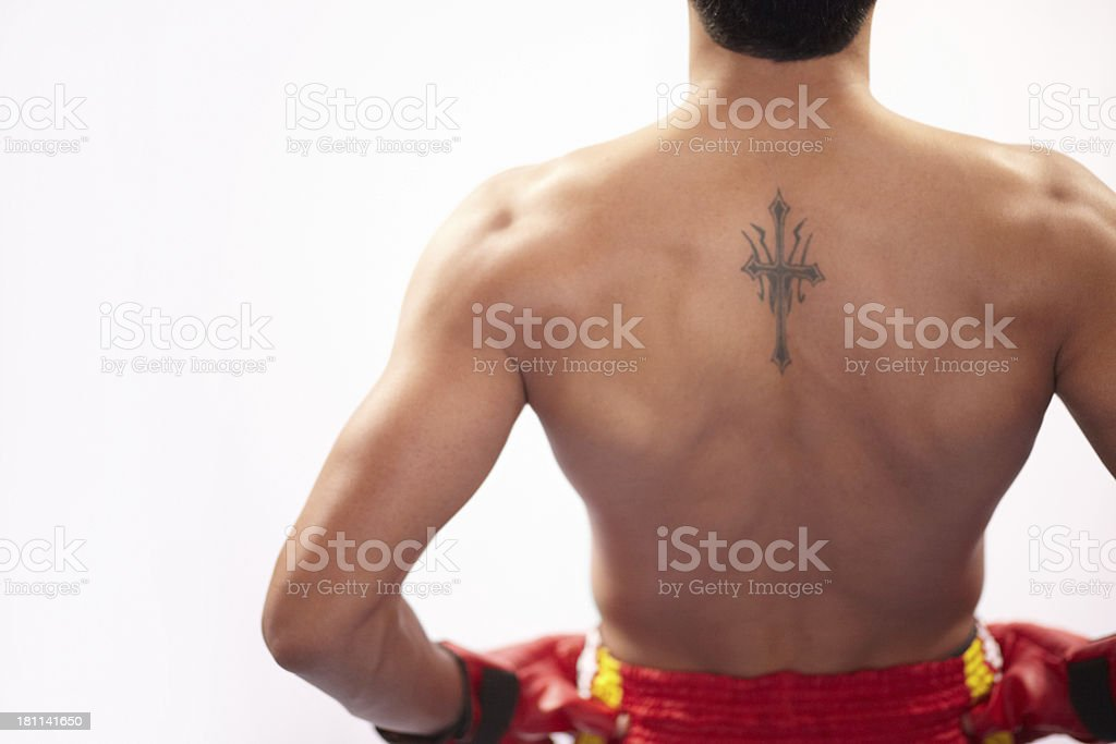 He is all braun royalty-free stock photo