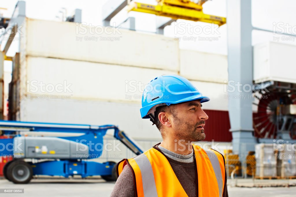 He knows where everything goes on this dock stock photo