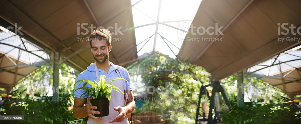 He takes pride in his plants stock photo