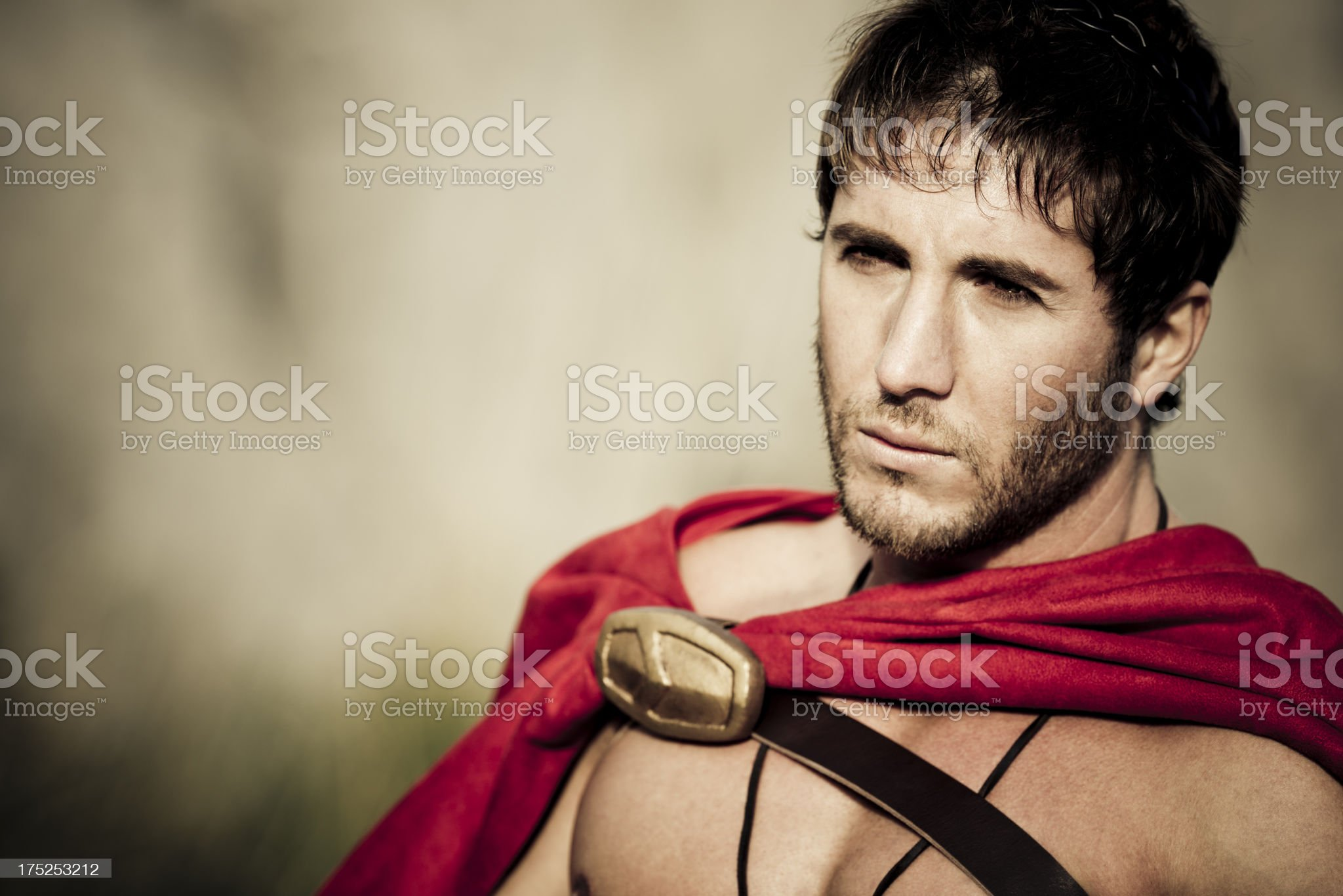 head and shoulders portrait of spartan royalty-free stock photo