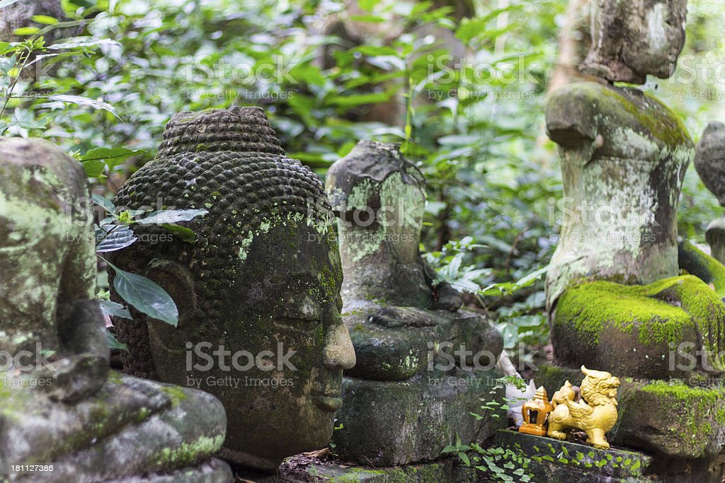 Head Buddha In Wat Umong Chiangmai royalty-free stock photo