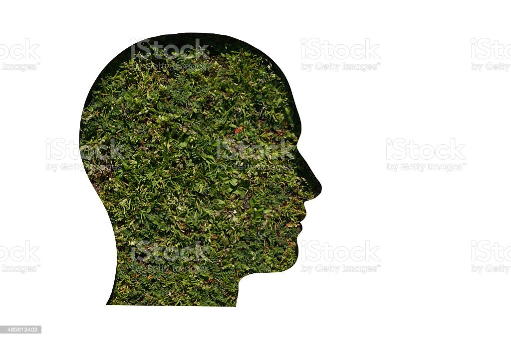head cut on paper and mounted on grass royalty-free stock photo