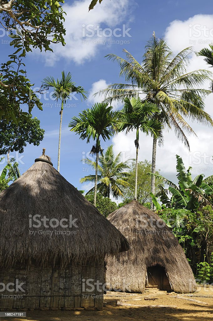 Head hunter village in Indonesia stock photo
