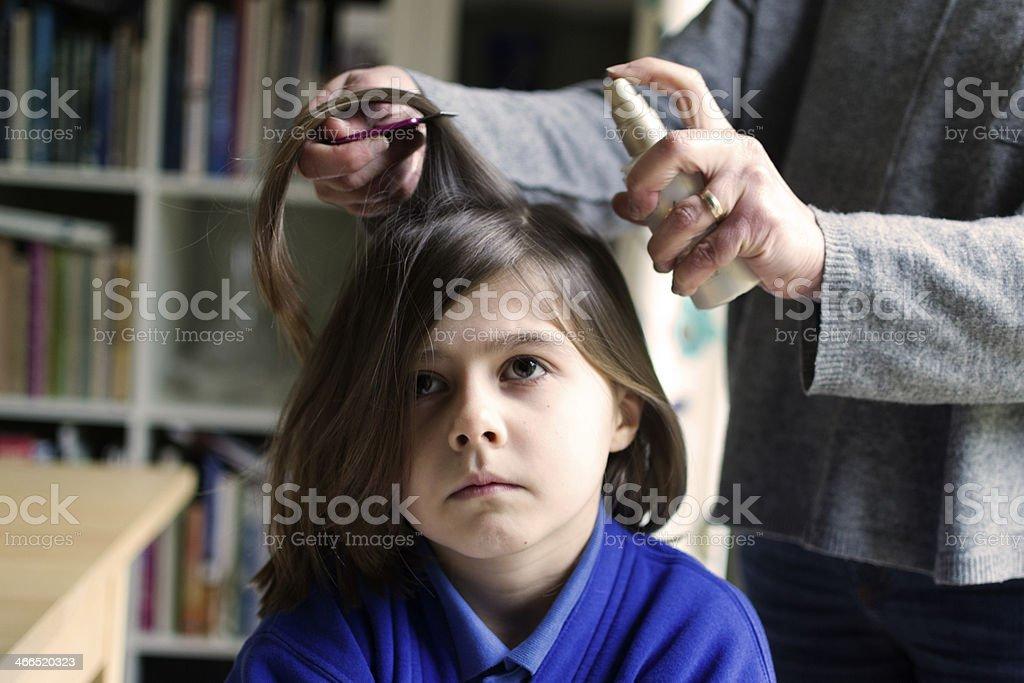 Head Lice Treatment stock photo