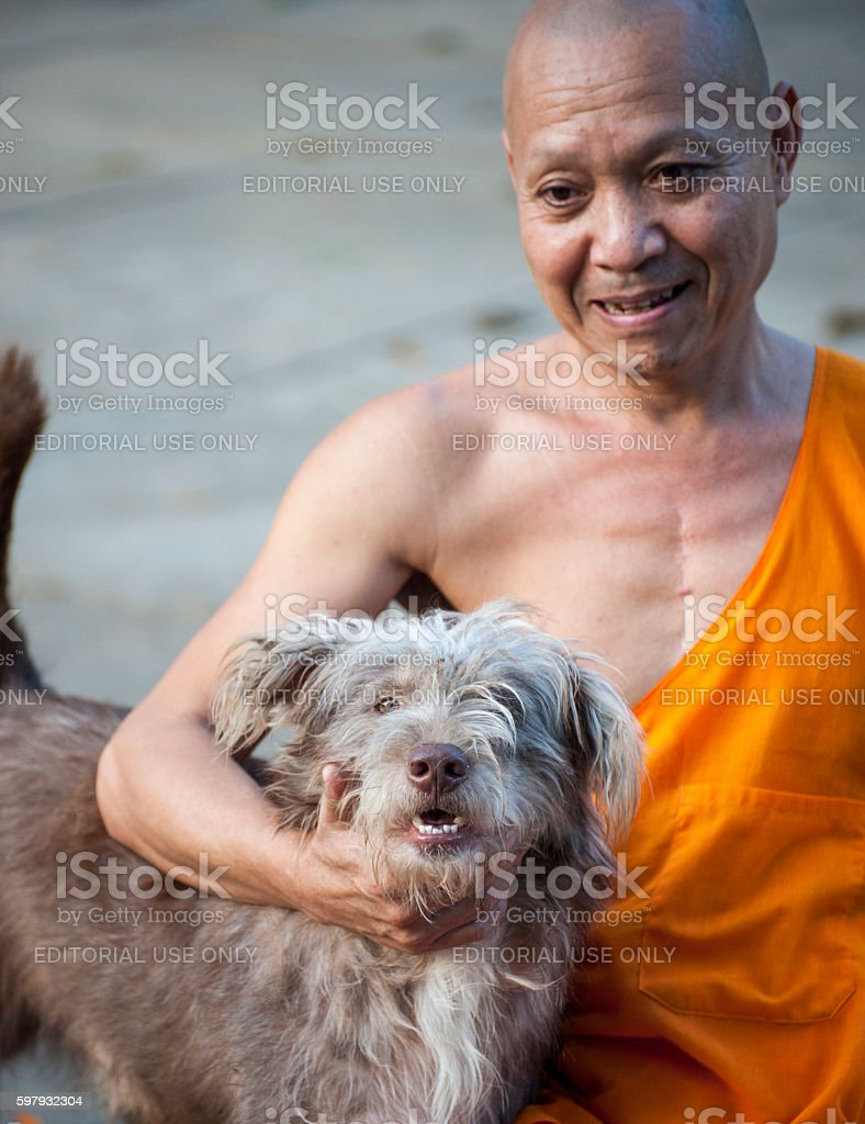 Head monk with his dog in Luang Prabang temple,Laos. stock photo