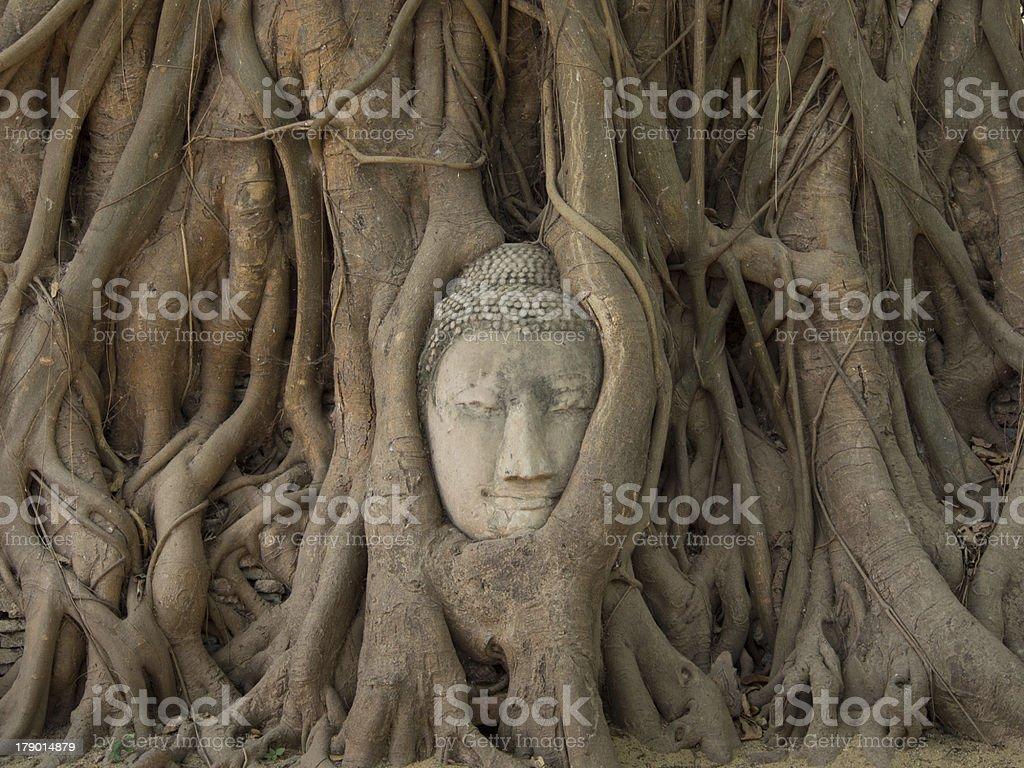 Head Of Buddha royalty-free stock photo