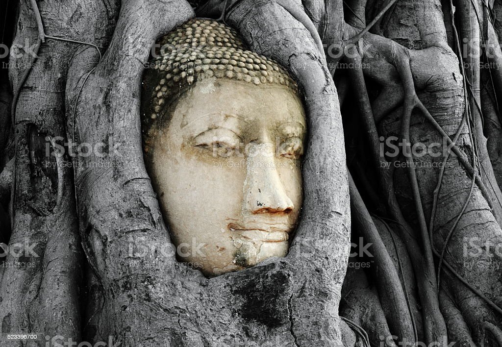 Head of Buddha Statue with the Tree Roots,Thailand. stock photo