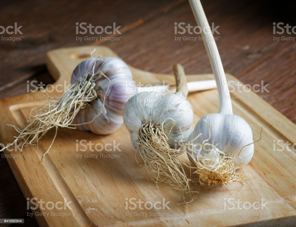 head of garlic on the table rustic still-life stock photo