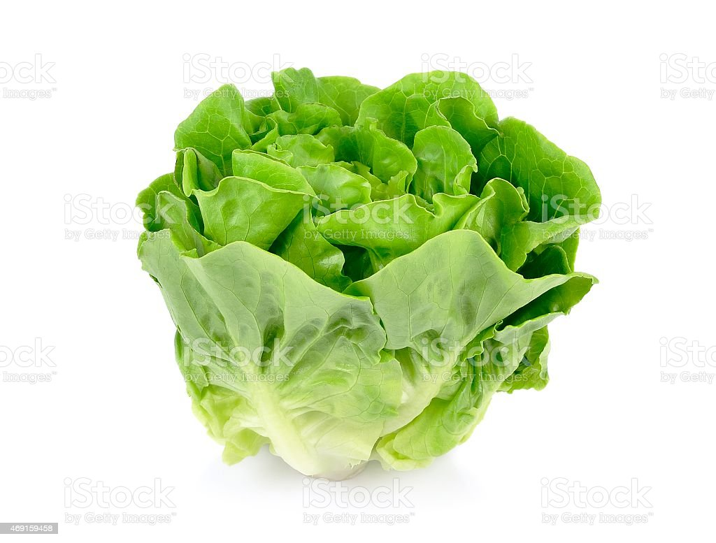 A head of green butter lettuce isolated on white background stock photo