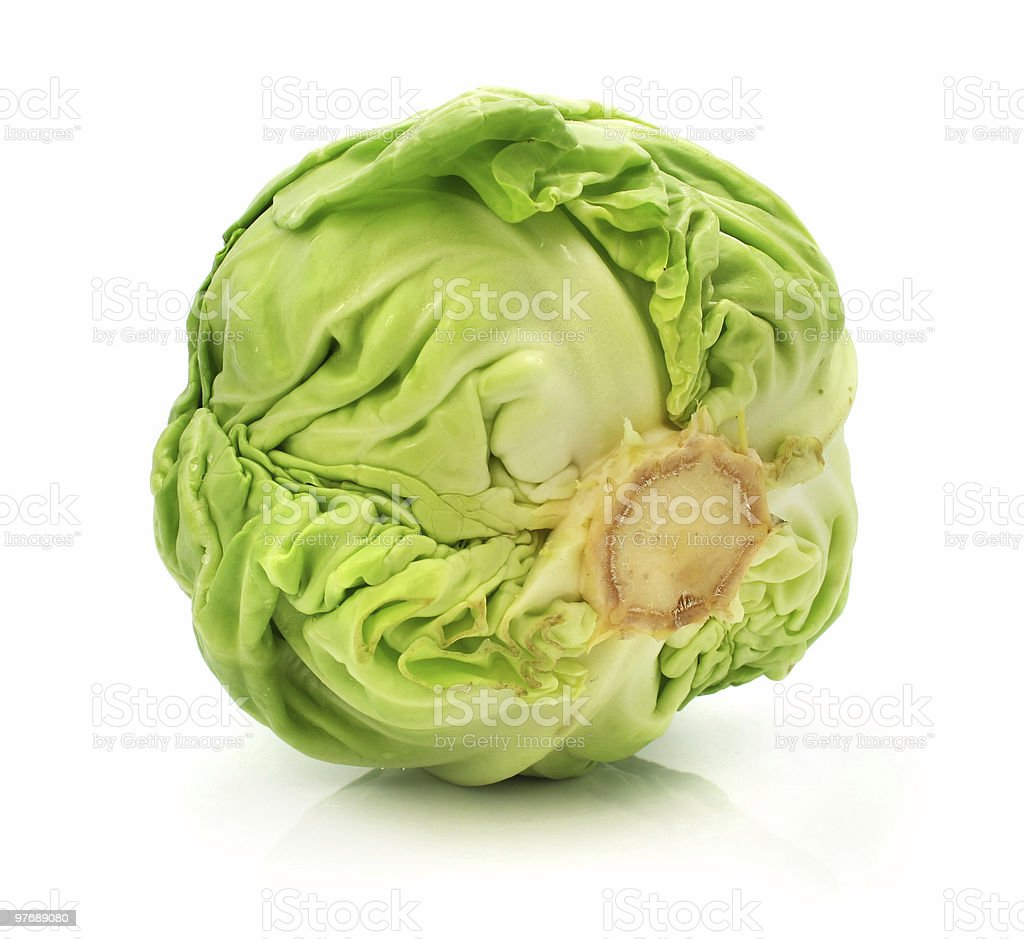 head of green cabbage vegetable isolated royalty-free stock photo