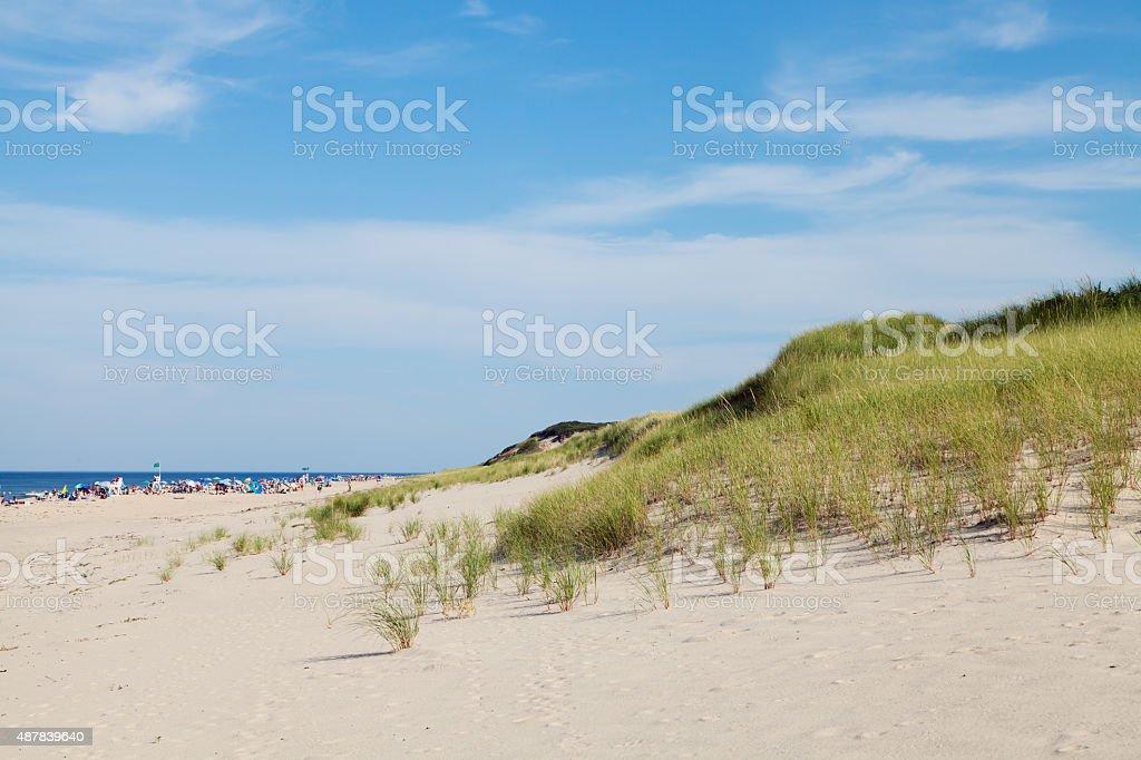 Head of the meadow, national seashore, Cape Cod, USA stock photo
