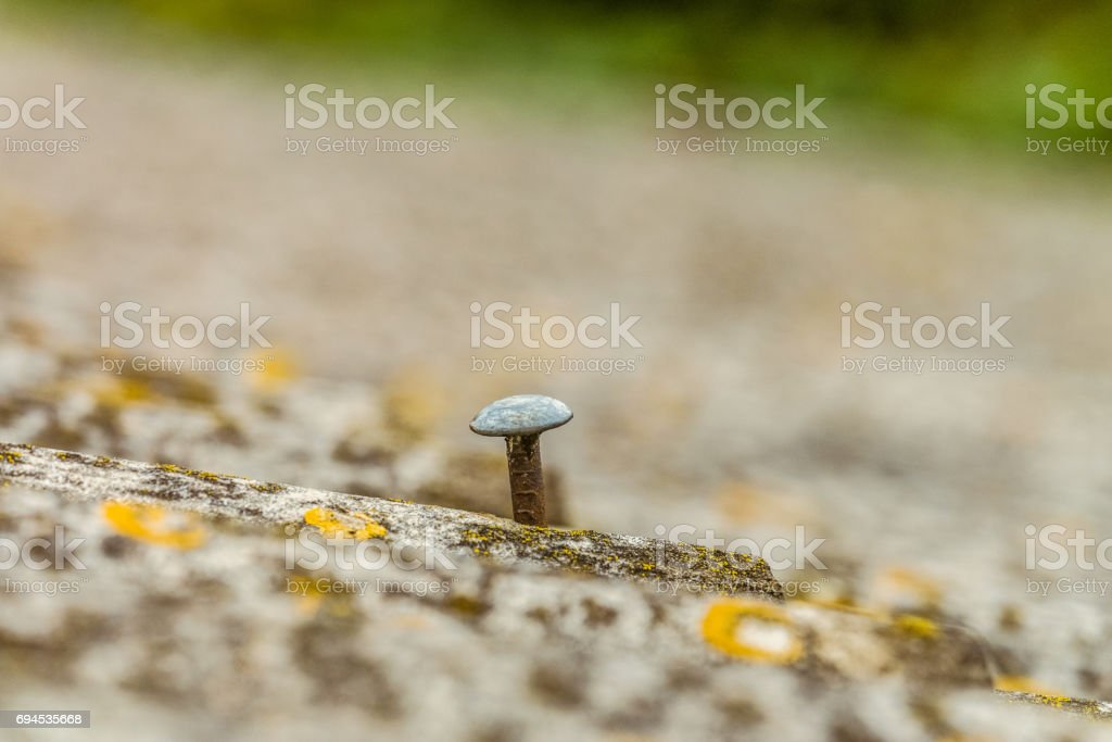 Head of the nail closeup. Hobnail sticking out of asbestos sheet old roof. Background with limited depth of field. stock photo