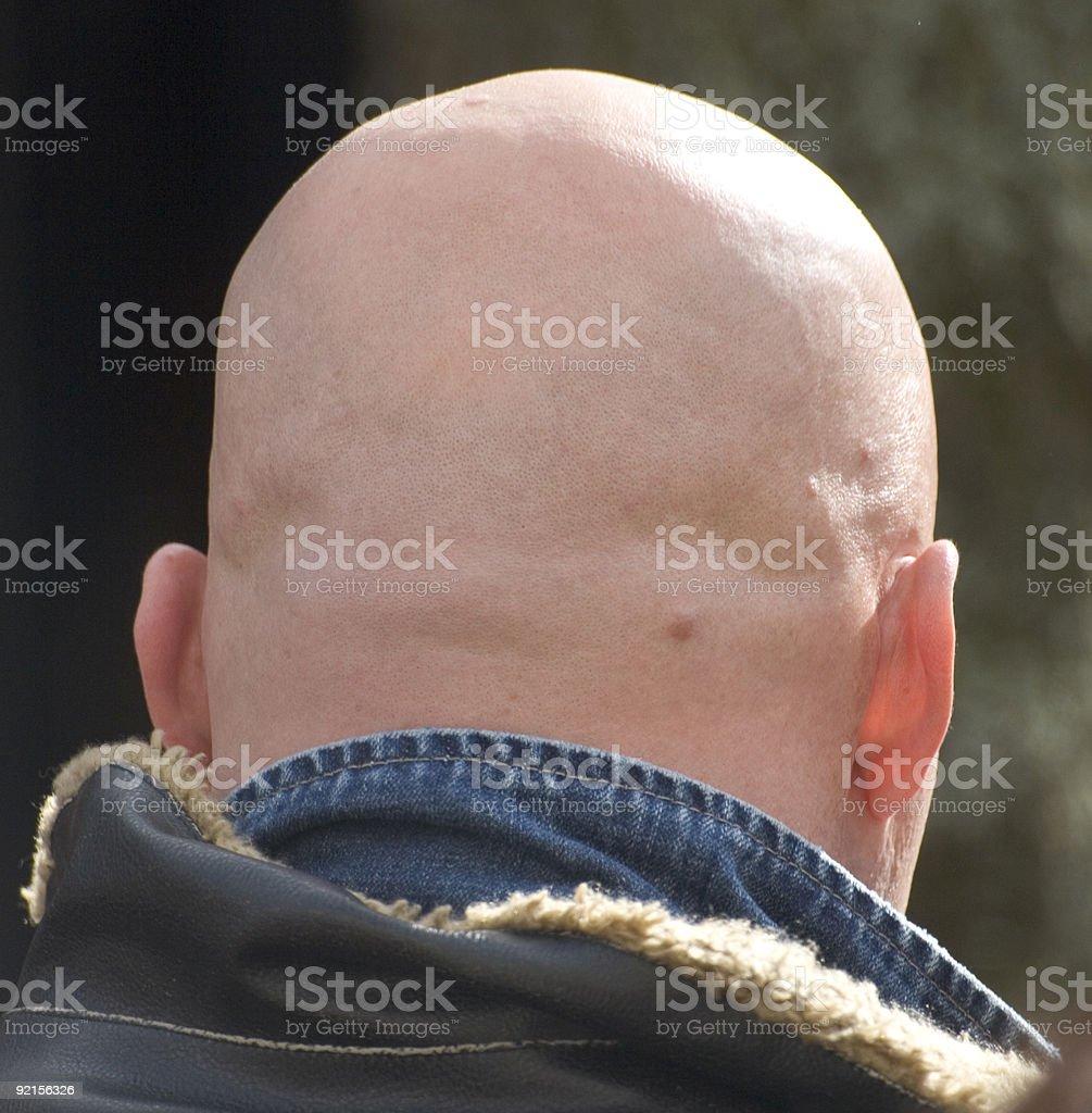 head stock photo