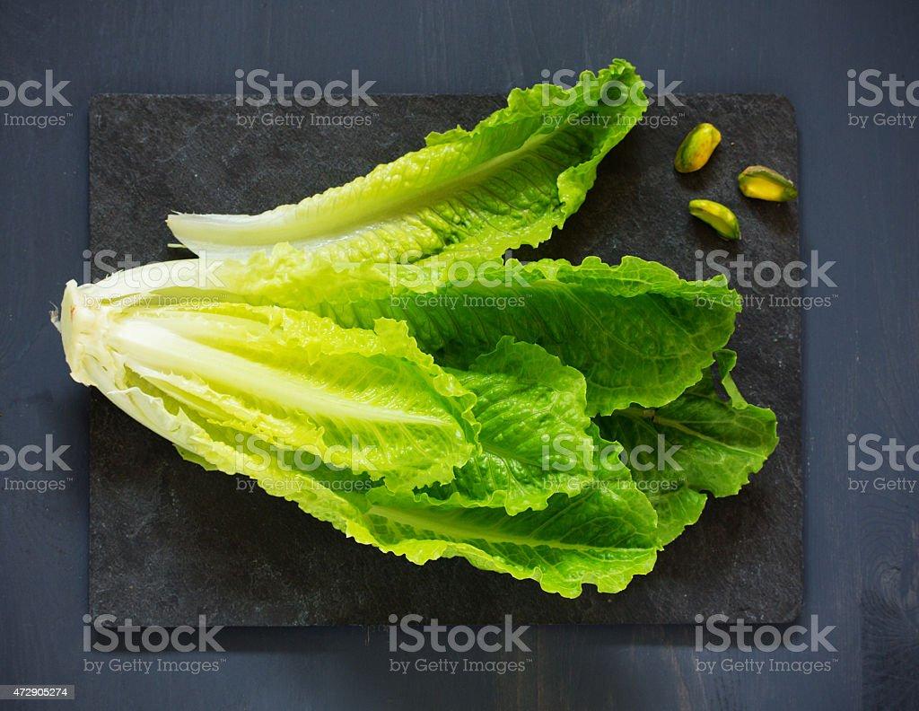 Head romaine lettuce on a blackboard. stock photo