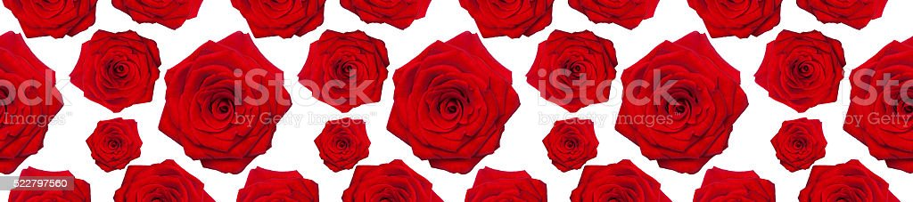 header panorama  pattern flower rose red  heart-shaped stock photo