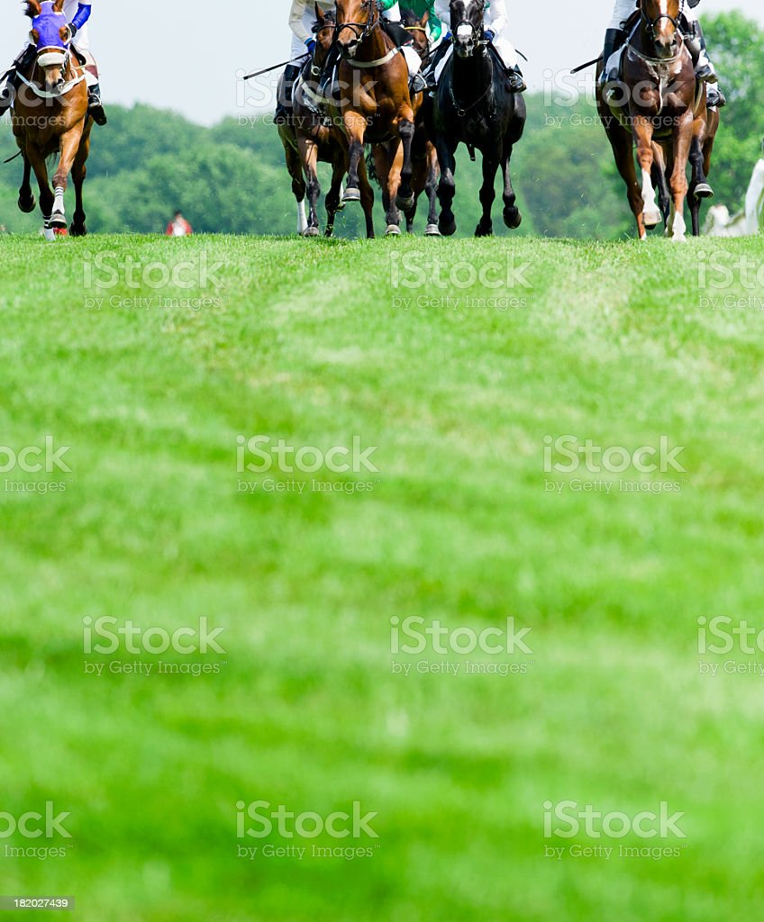 Head-On Horse Racing on turf stock photo