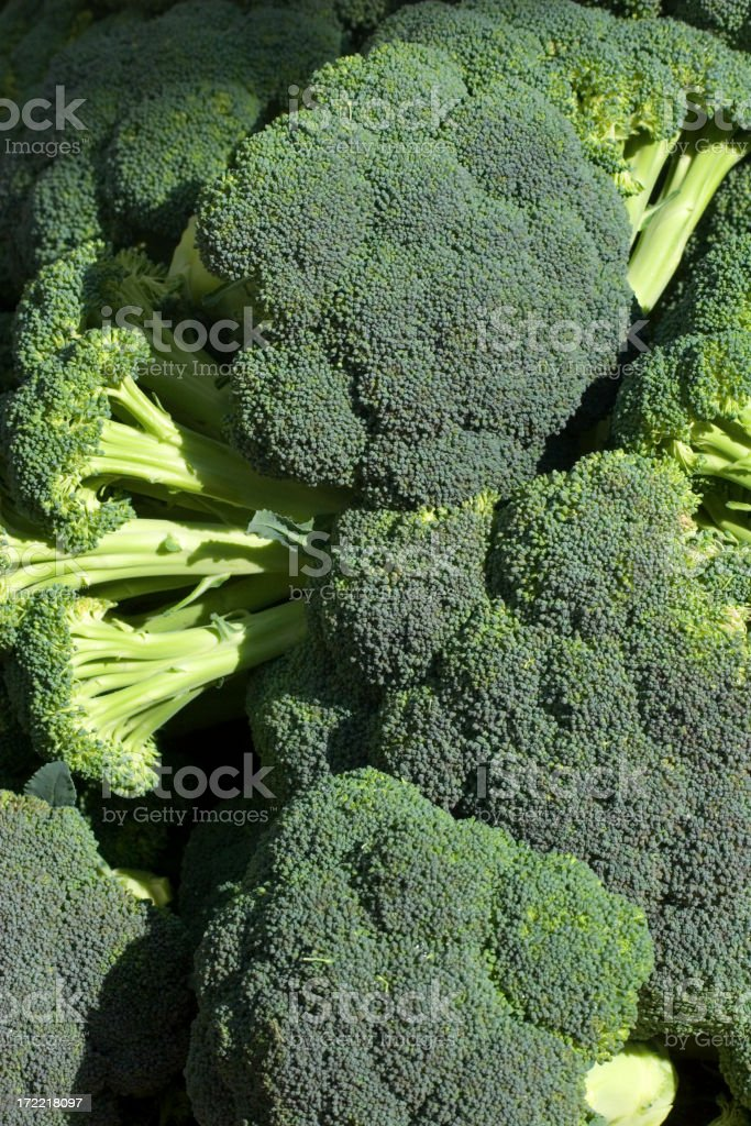 Heads of Broccoli royalty-free stock photo