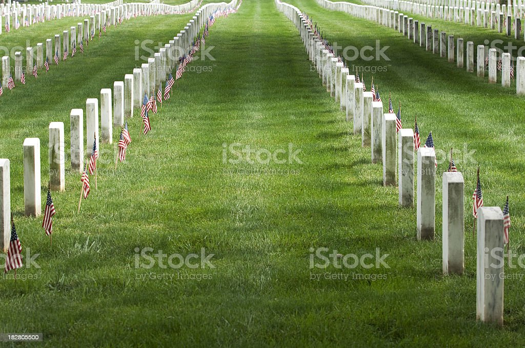 Headstone Rows and American Flags, Diminishing Perspective stock photo