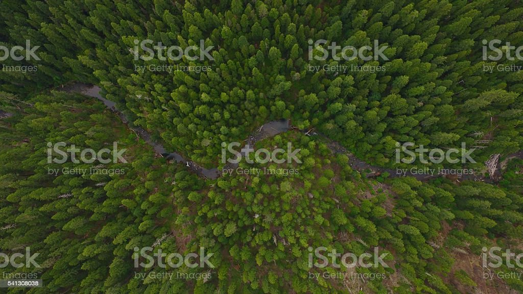Headwaters of the South Umpqua River stock photo