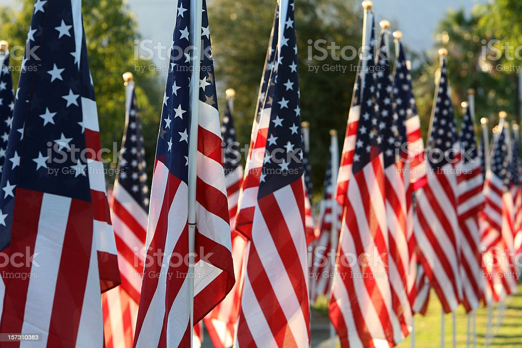 Healing Field With American Flags stock photo