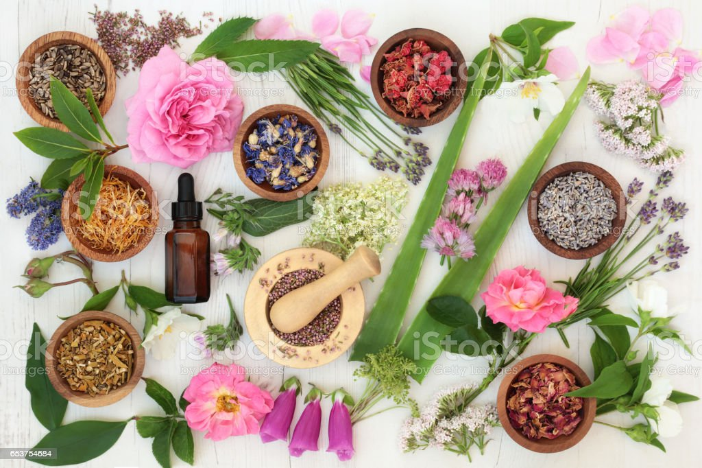Healing Flowers and Herbs stock photo