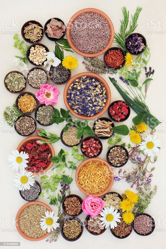 Healing Herbs and Flowers stock photo