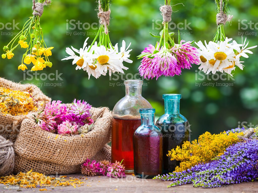 Healing herbs bunches, bottle of tincture, bags with dried plant stock photo