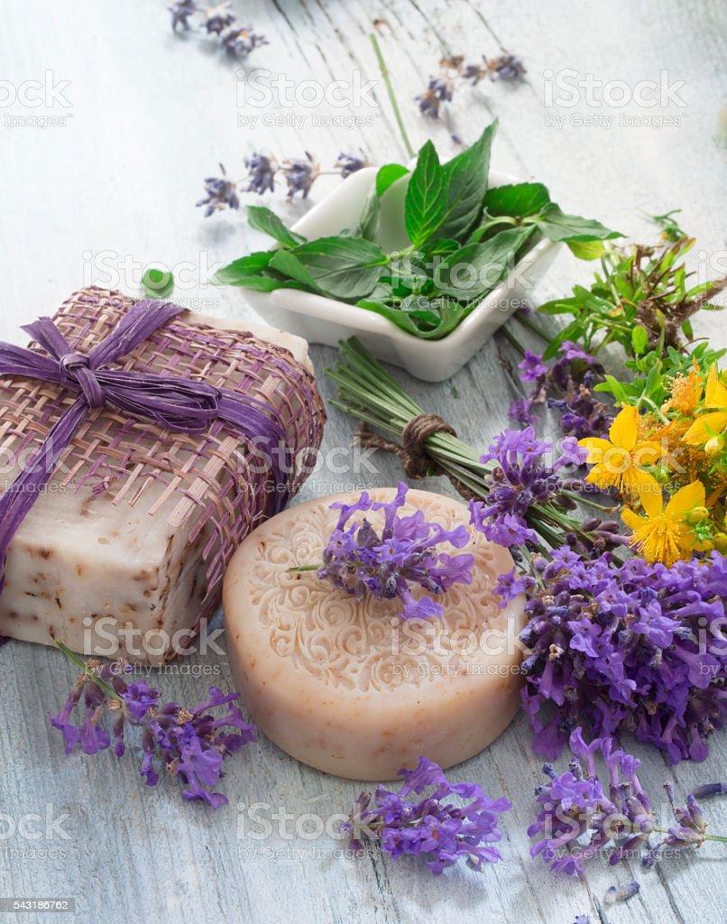 Healing Herbs cosmetics stock photo
