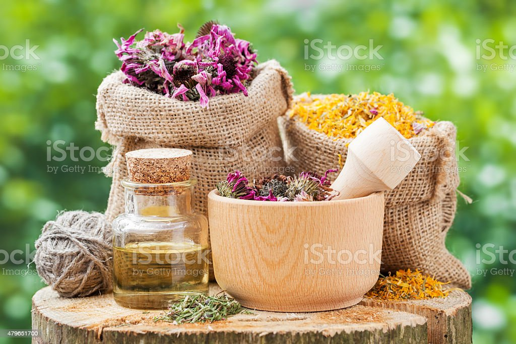 Healing herbs in bags,  mortar with coneflowers and essential oil stock photo