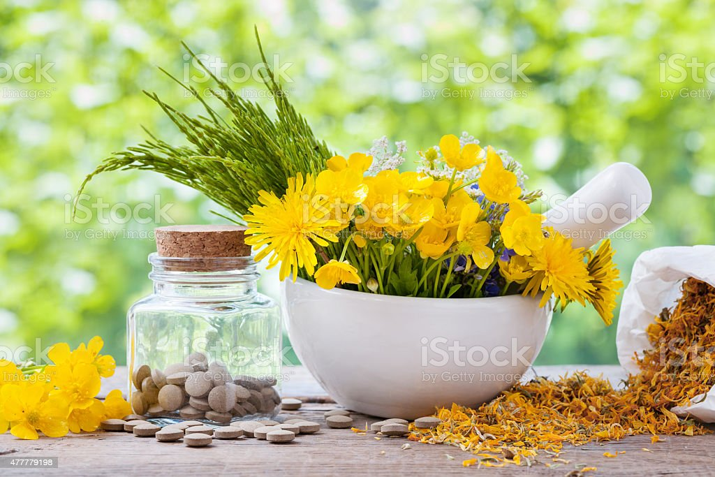 Healing herbs in mortar and bottle with pills stock photo