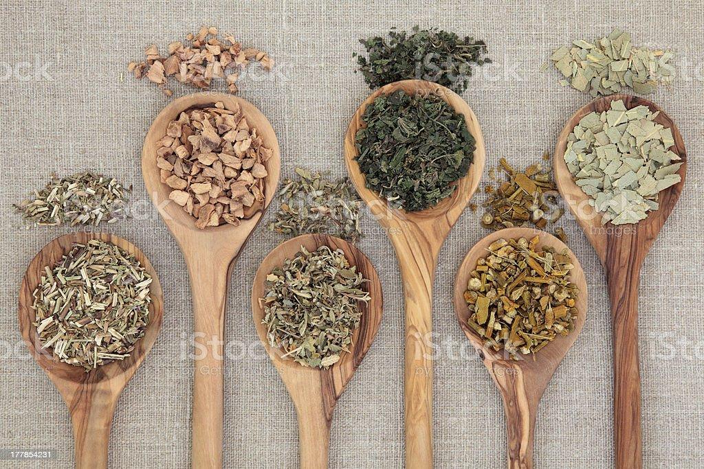 Healing Herbs royalty-free stock photo