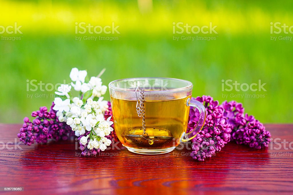 healing tea from a lilac flower in the garden stock photo