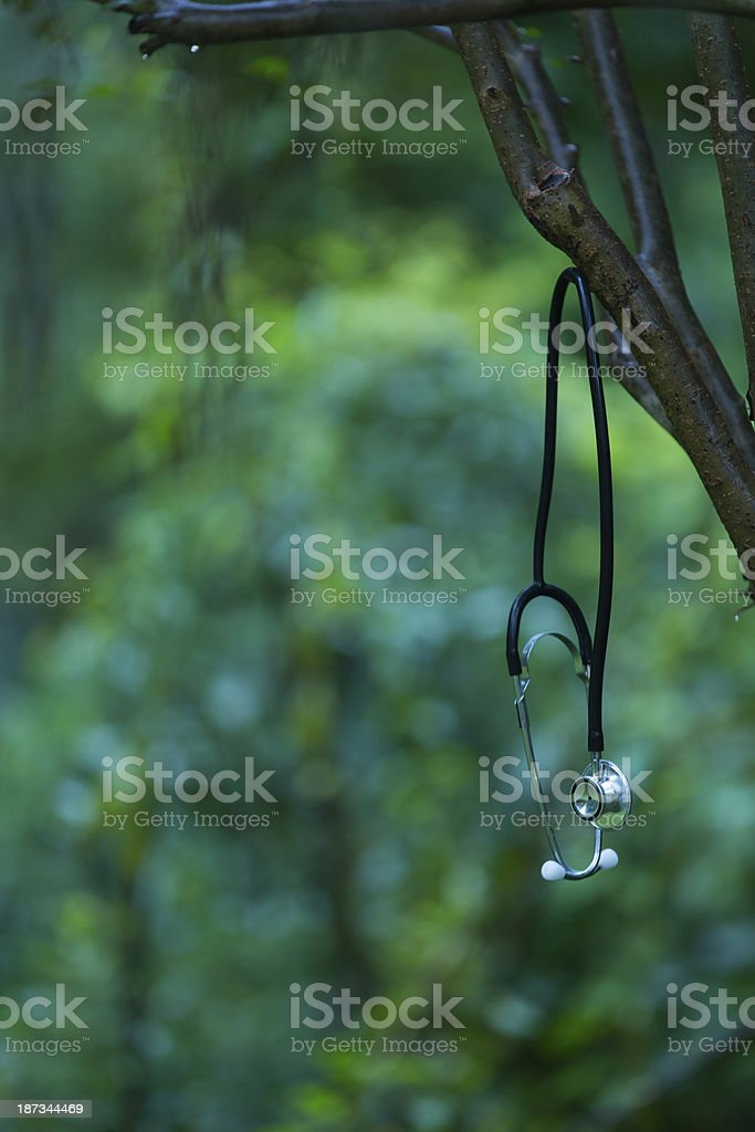 Health and Nature royalty-free stock photo