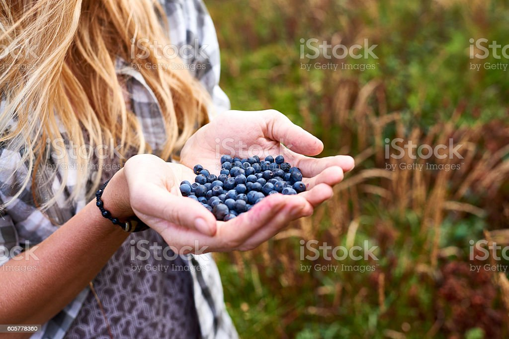 Healthy benefit of blueberry stock photo