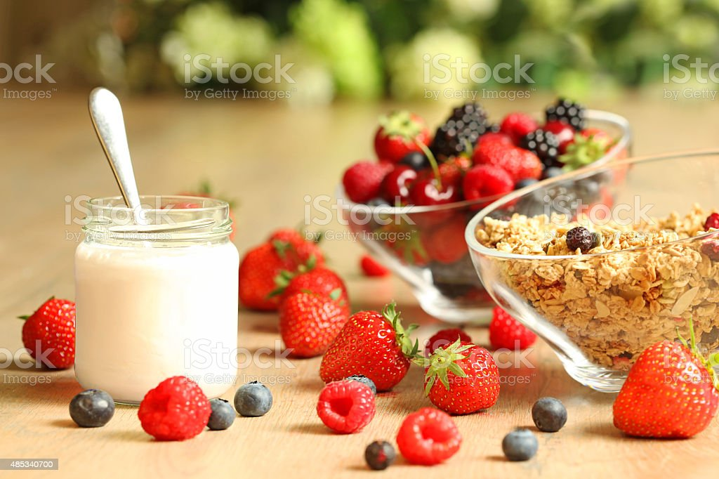 Healthy Breakfast with Homemade Yogurt, Berries and Granola stock photo
