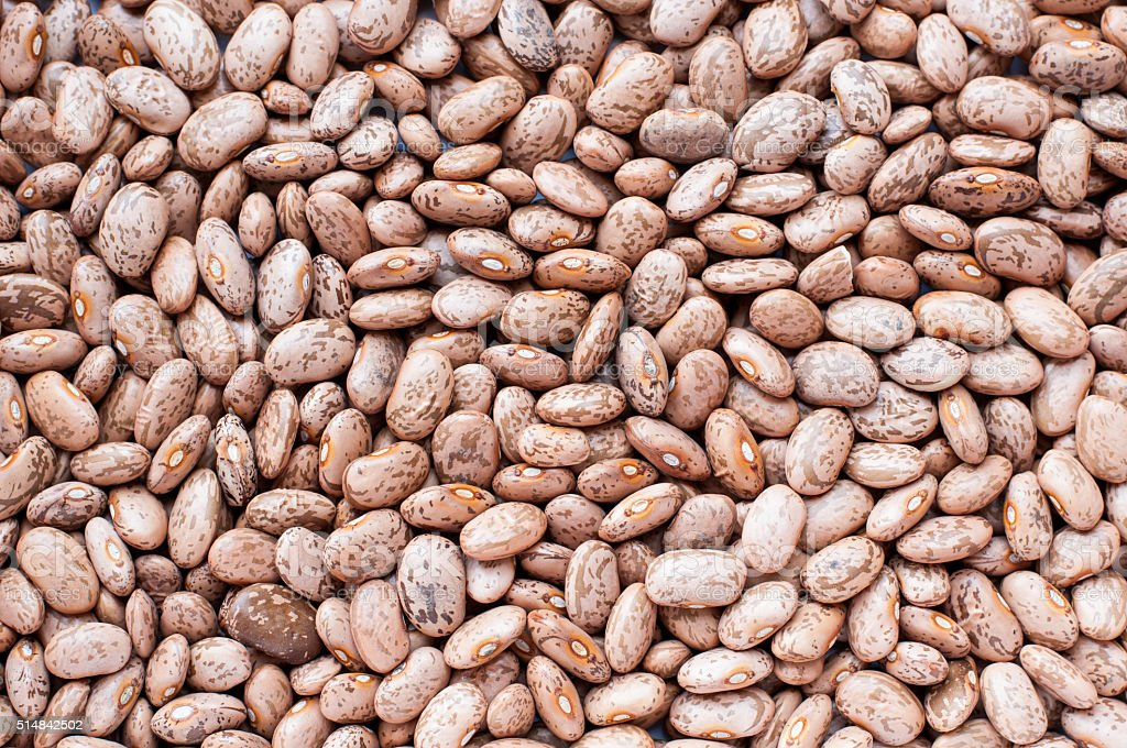 Healthy Brown Pinto Beans stock photo