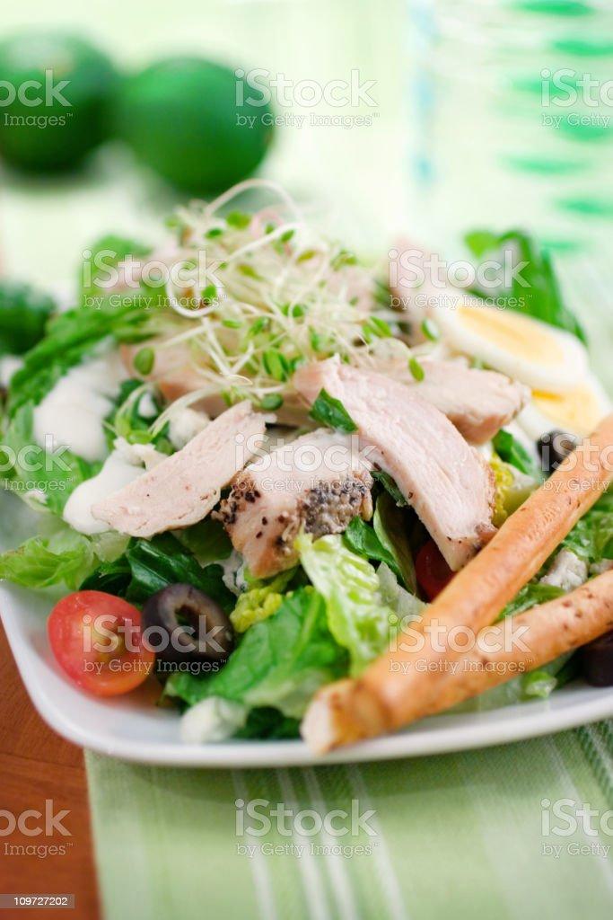 Healthy Chicken Salad royalty-free stock photo