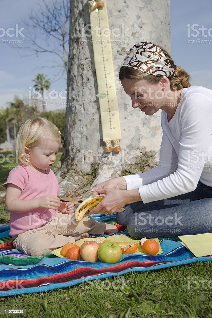 Healthy eating 3 royalty-free stock photo