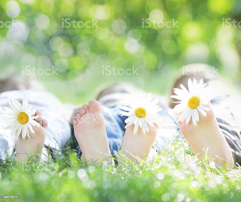 Healthy family feet in the grass with flowers stock photo