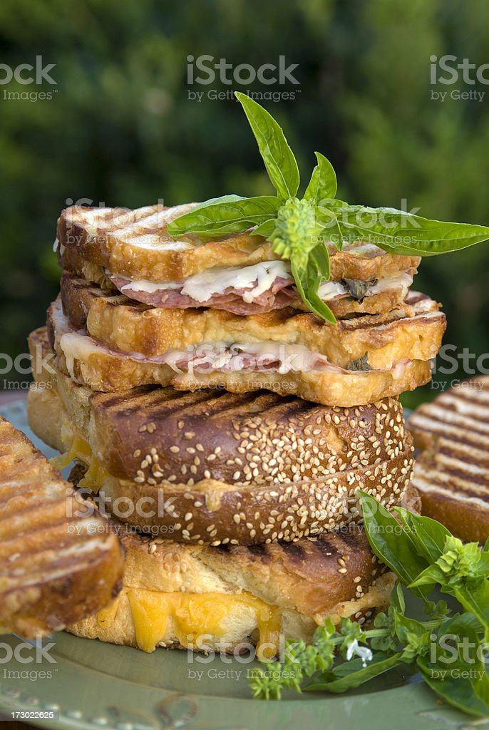 Healthy Food, Grilled Cheese & Beef Panini, Fresh Bread Picnic Sandwich stock photo